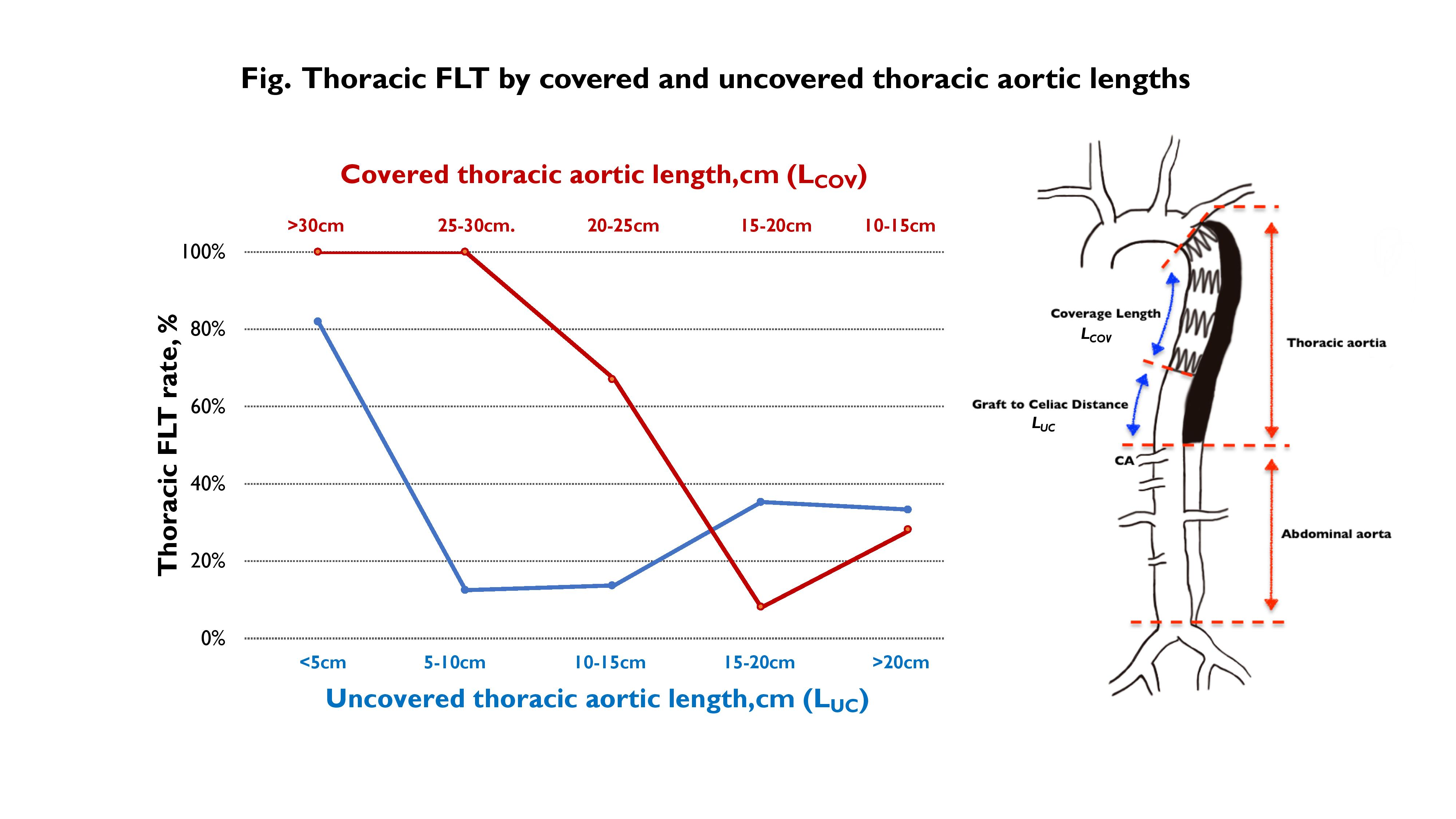 Scvs Impact Of Aortic Coverage Length On Thoracic And Abdominal